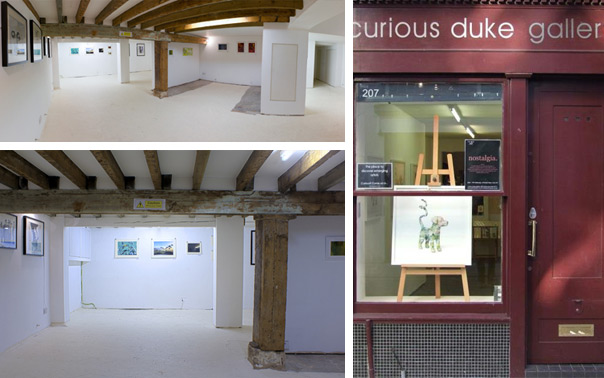 The Curious Duke Gallery